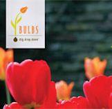Daylight Savings Poster - Think Spring